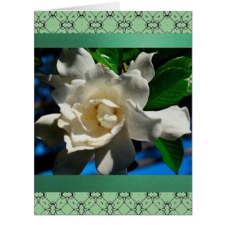 Saludo del diseño del verde de la Magnolia-Luz Tar Tarjeta De Felicitación Grande