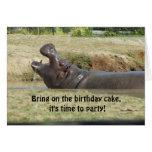 Saludo divertido del cumpleaños del Hippopotamus Tarjeta
