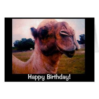 Saludo Drooling del cumpleaños del camello Tarjeta De Felicitación