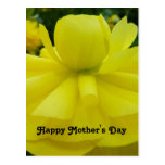 Saludo feliz del día de madres de la flor amarilla tarjeta postal