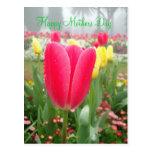 Saludo feliz del día de madres del jardín del tuli tarjeta postal