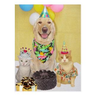 Saludo o invitación adaptable del cumpleaños tarjeta postal