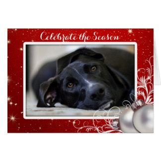 Saludo rojo de la foto del mascota de la familia tarjeta de felicitación