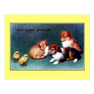 Saludos 1906 de Pascua del vintage; perritos del c Tarjeta Postal