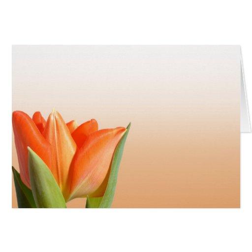 Saludos anaranjados del tulipán tarjeton