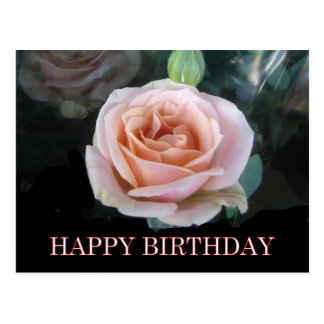 Saludos color de rosa rosados del cumpleaños tarjeta postal
