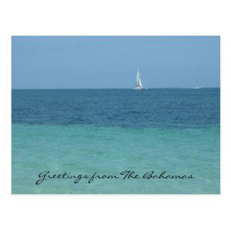 saludos de Bahamas Tarjeta Postal