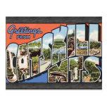 Saludos de Catskill Mts., vintage Tarjetas Postales