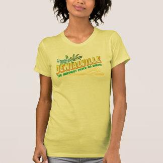 Saludos de Denialville - negación Tshirt