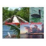 Saludos de Florida postal tarjeta postal