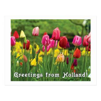 Saludos de Holanda Postales