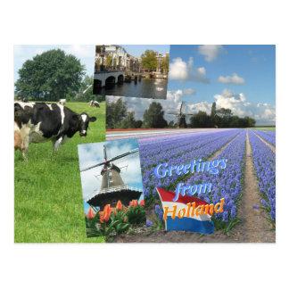 Saludos de Holanda Tarjetas Postales