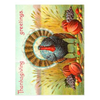 Saludos de la acción de gracias del vintage postal