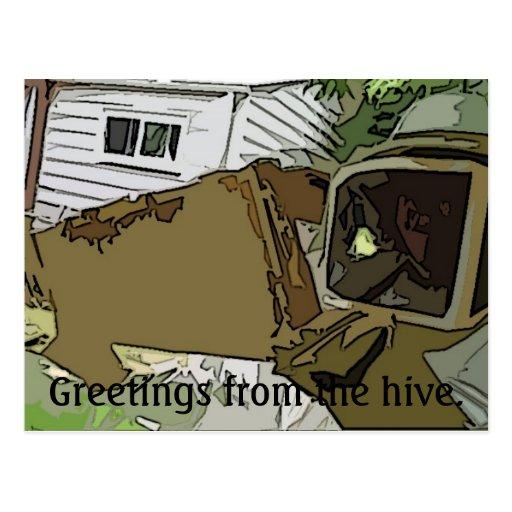 Saludos de la colmena tarjetas postales