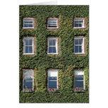 Saludos de la hiedra de Windows de la casa de ciud Felicitacion