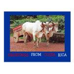 Saludos de la postal de Costa Rica (&oxcart de los