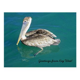 Saludos de la postal de Key West