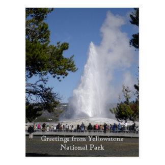Saludos de la postal del parque nacional de Yellow