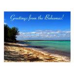 ¡Saludos de las Bahamas! Tarjeta Postal