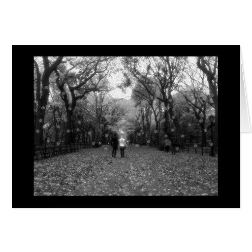 Saludos de las estaciones - Central Park y nieve d Tarjeta De Felicitación