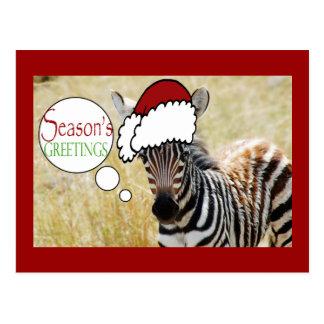 Saludos de las estaciones del navidad de la cebra tarjetas postales