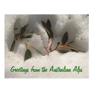 Saludos de las montañas australianas postales