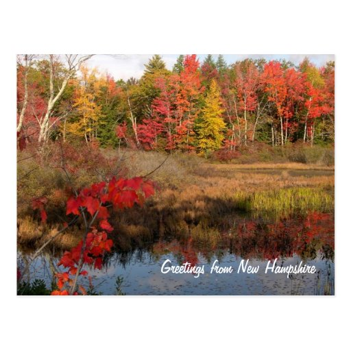 Saludos de las postales de la caída del NH