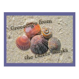 Saludos de los Seashells de Outer Banks Tarjetas Postales