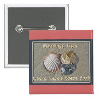 Saludos de los Seashells del parque de playa de IB Pin Cuadrado