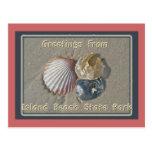 Saludos de los Seashells del parque de playa de IB Tarjeta Postal