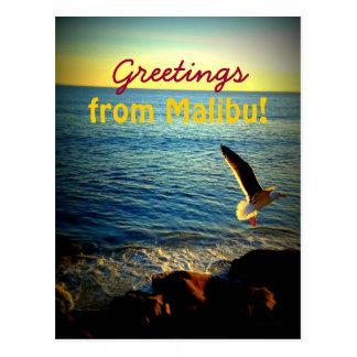 ¡Saludos de Malibu Tarjeta Postal
