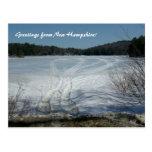 Saludos de New Hampshire Tarjeta Postal