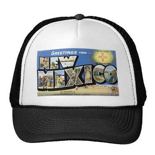 Saludos de New México Gorros Bordados
