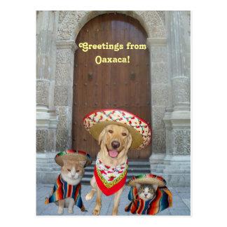 Saludos de Oaxaca Tarjetas Postales
