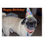 Saludos de Puggy: Cumpleaños Felicitacion