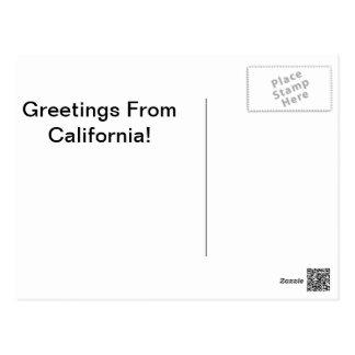 Saludos de San Pedro, California Tarjeta Postal