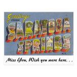 Saludos de Saratoga Springs Tarjetas Postales