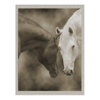 Saludos del caballo postal