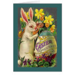 Saludos del conejito de pascua tarjetas