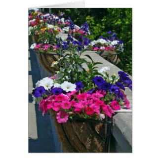 Saludos del cumpleaños, flores en Leland Michigan Tarjeta De Felicitación