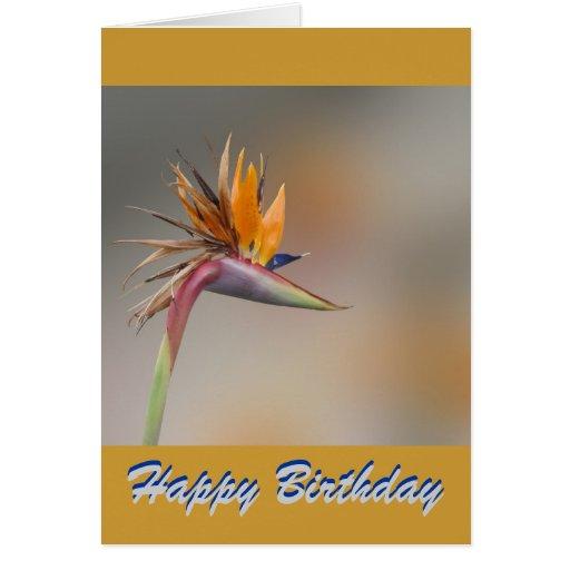 Saludos del cumpleaños tarjeta de felicitación
