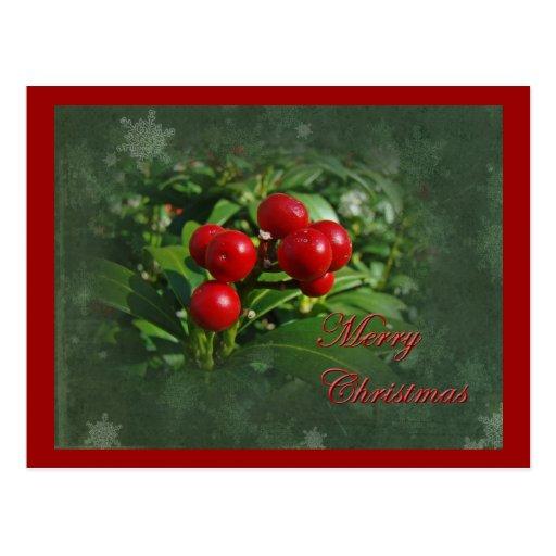 Saludos del navidad de las bayas del acebo postal