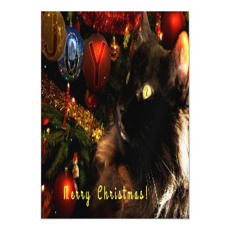 Saludos del navidad del gatito invitaciones magnéticas