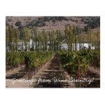 ¡Saludos del país vinícola! Tarjetas Postales