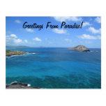 ¡Saludos del paraíso! Tarjeta Postal