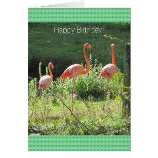 Saludos rosados del cumpleaños de los flamencos tarjeta de felicitación