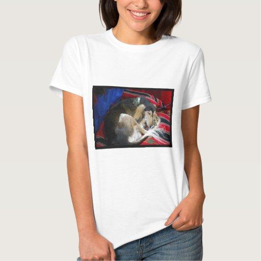 saluki-1.jpg t-shirt