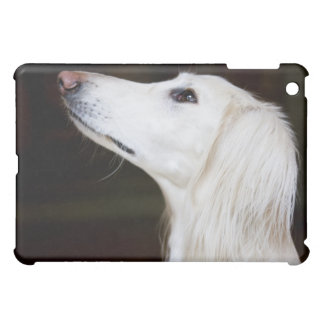Saluki Looking Up Cover For The iPad Mini