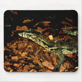 Salvador Waster Monitor Mouse Pad