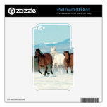 Salvaje corriente skins para iPod touch 4G